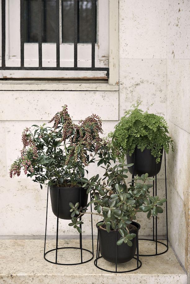 Wire Base & Plant Pot 20cm