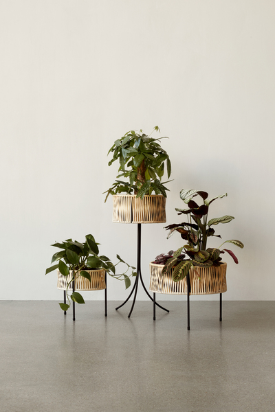 Umanoff Planters